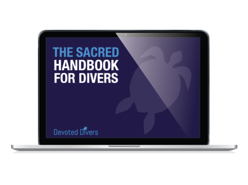 Marine Biology course for scuba divers